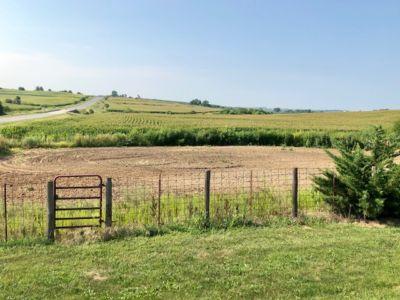 1591 Pasture