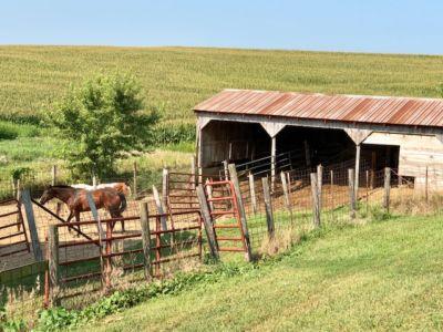 1591 Horse Stall