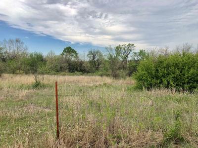 312 Acres Moran (8)