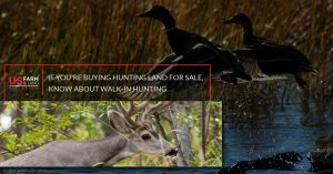 If You're Buying Hunting Land For Sale, Know About Walk-In Hunting