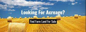 What To Consider Before Purchasing Land For Sale