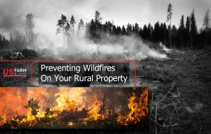 Preventing Wildfires On Your Rural Property
